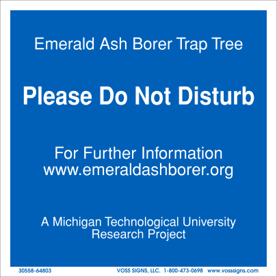 research project emerald ash borer Ii project summary: biological control is currently the only promising long-term management strategy for emerald ash borer (eab), a beetle that is native to asia it was first detected in north.